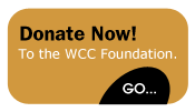 foundation-donate-now