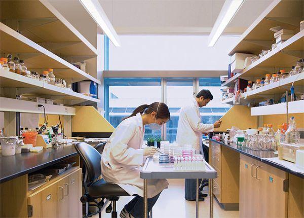 medical-lab