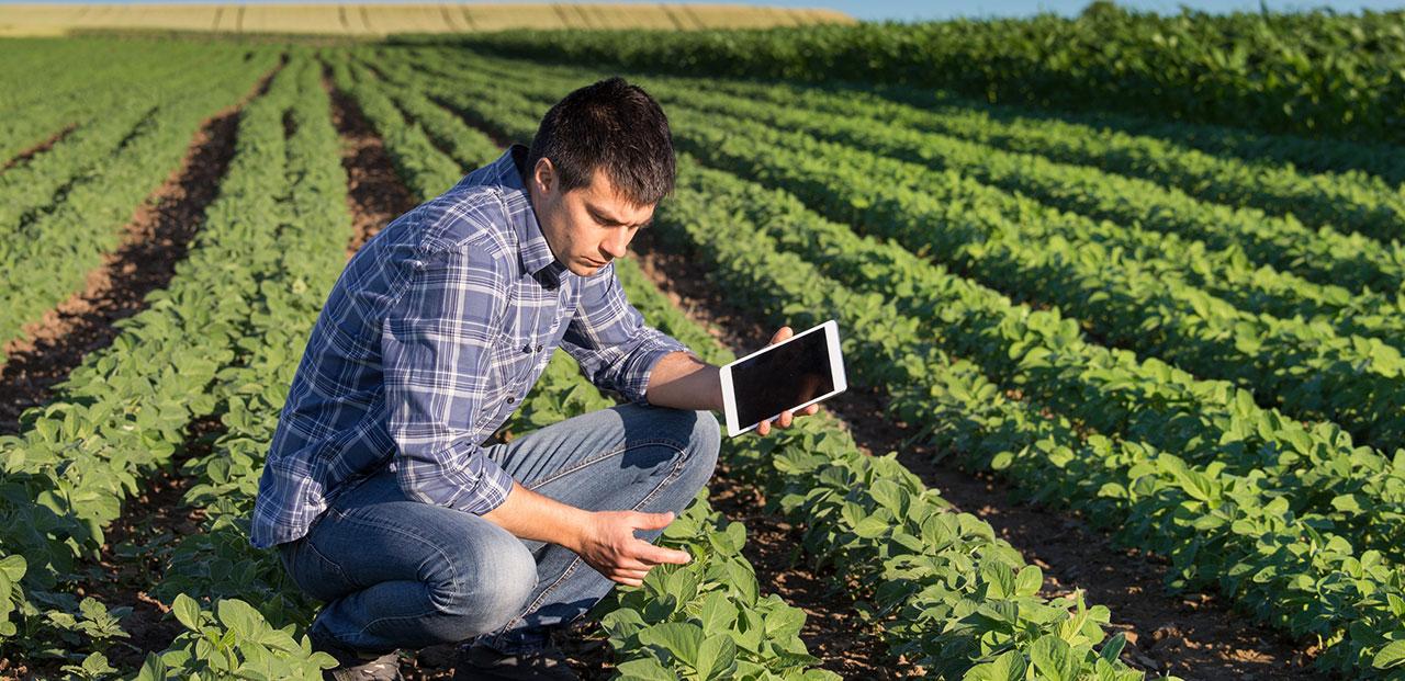 program-agribusiness-tech