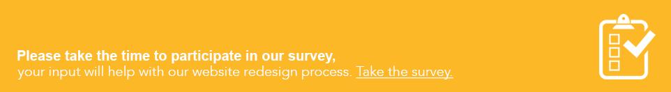 website-survey
